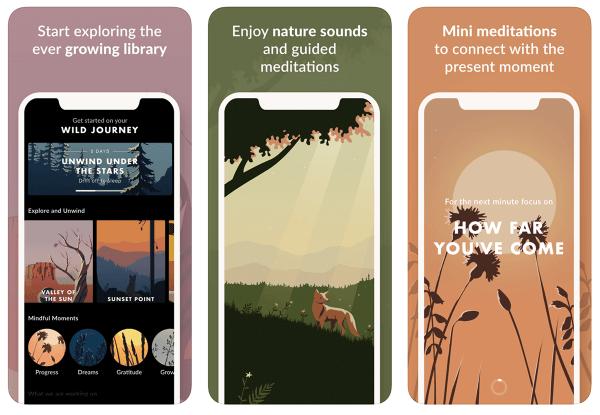 """Medytacja na łonie natury z aplikacją """"Wild Journey"""""""