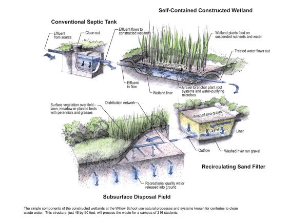 Ekologiczna oczyszczalnia wykorzystująca system mokradeł