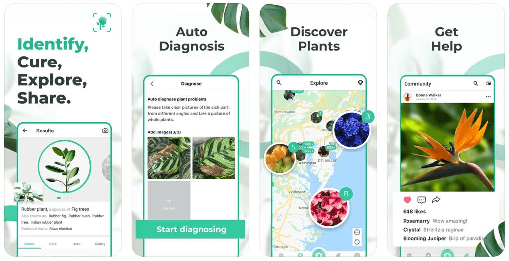 Zrzuty ekranu z aplikacji PictureThis - Plant Identifier