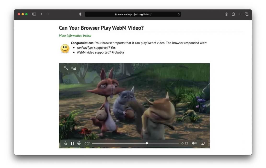 Obsługa WebM w przeglądarce Safari pod systemem macOS BigSur 11.3 beta
