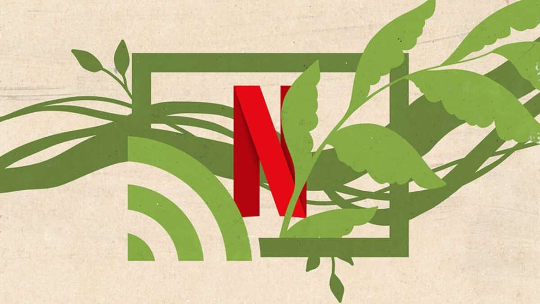 Netflix:  wpływ streamingu na klimat