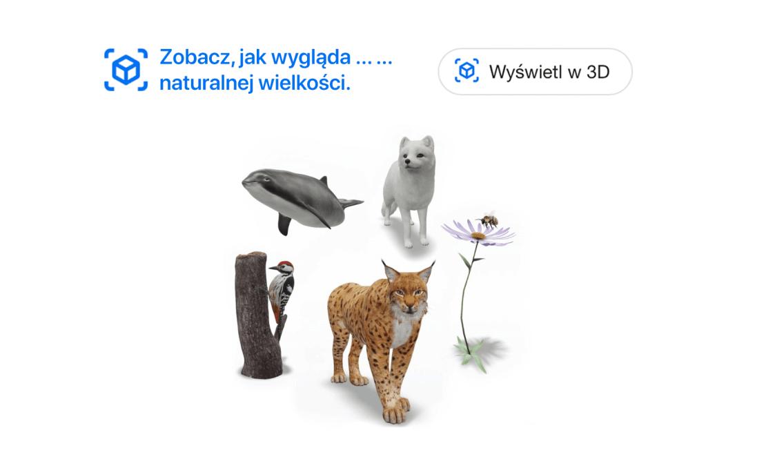 Zwięrzęta 3D w Google - chronione gatunki w Szwecji