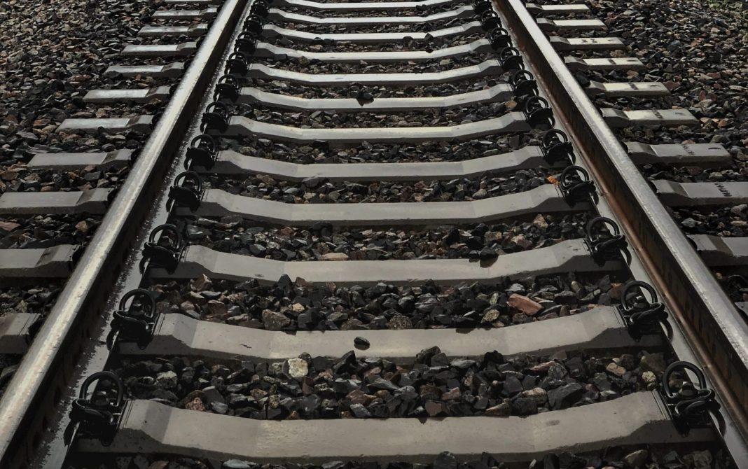 Guarda e Covilhã voltam a estar ligadas por comboio: reabertura ocorre 12 anos depois