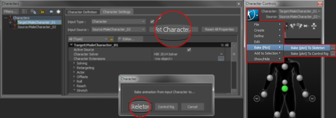CharacterSettings_PlotCharacter_ToSkeleton