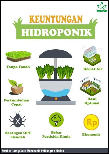 Bercocok Tanam Tanpa Tanah : bercocok, tanam, tanpa, tanah, Mochariv, Pertanian, Depan