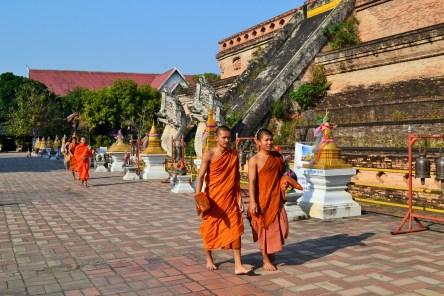 Monges estudantes circulando entre os templos e rezando