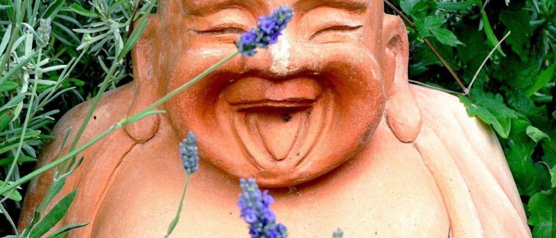 Mr Buda riéndose de nosotros