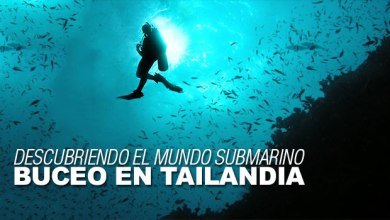 Photo of Descubriendo el mundo submarino: Buceo en Tailandia