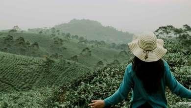 voluntariado en el campo para viajar por el mundo - mochileros.org