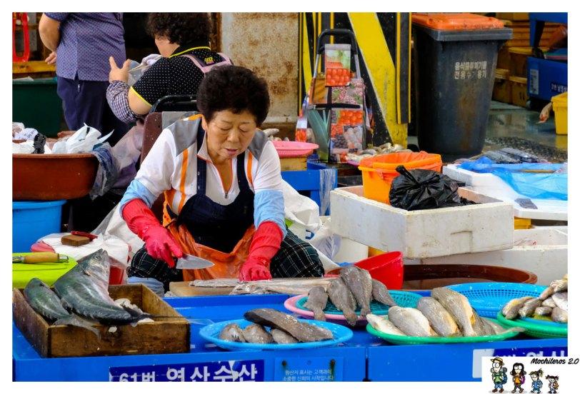 mercado pescado busan