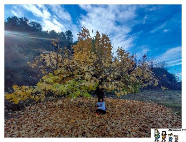 otoño ruta senderismo