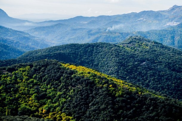 Bosque de Cobre en la Gran Senda de Málaga