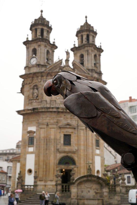 Loro Ravachol de Pontevedra