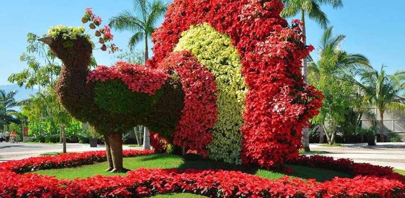 Los Campos De Flores Mas Hermosos Del Mundo Mochilero Viajando