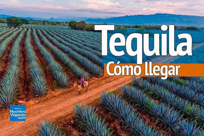 cómo llegar a Tequila