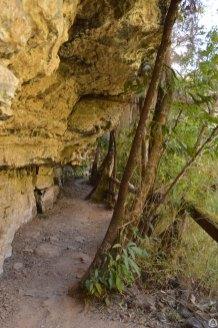 Trecho da trilha bem próximo à pedra