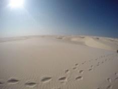 Desertão