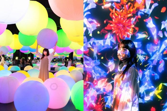 台北室內景點|teamlab台灣2012最美的互動展心得!未來遊樂園&與花共生的動物們@士林科教館捷運士林站