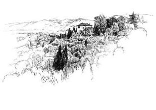 Firenze・ミケランジェロ広場からの眺め / 画 望月麻里 illustrated by (C) Mari Mochizuki.