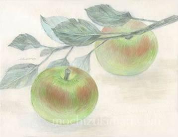 """収穫(個人蔵)画:望月麻里 2011年 / 雲肌麻紙、岩絵の具、膠、墨、胡粉 / Mari Mochizuki """"Harvest"""""""