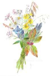 sold out「秋の野を歩く望月麻里(鉛筆、色鉛筆)illustrated by Mari Mochizuki