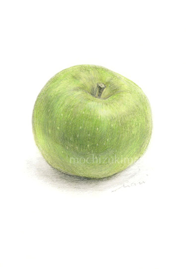 「Bramley Apple」望月麻里(鉛筆、色鉛筆)素材:マットコート紙(ややツヤあり)illustrated by Mari Mochizuki