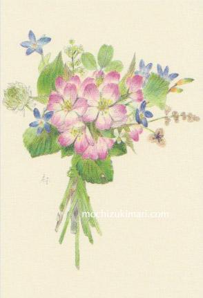 sold out「春・雪国にて」望月麻里(鉛筆、色鉛筆)素材:アラベール(画用紙のような質感)illustrated by Mari Mochizuki