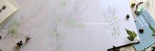 NEWS:望月麻里のオフィシャルサイト・9月のカバー画像