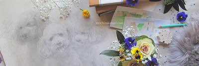 NEWS:望月麻里のオフィシャルサイト・2018年新春カバー画像とご挨拶