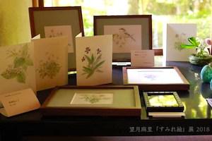 展覧会:追想 望月麻里「すみれ絵展」2018