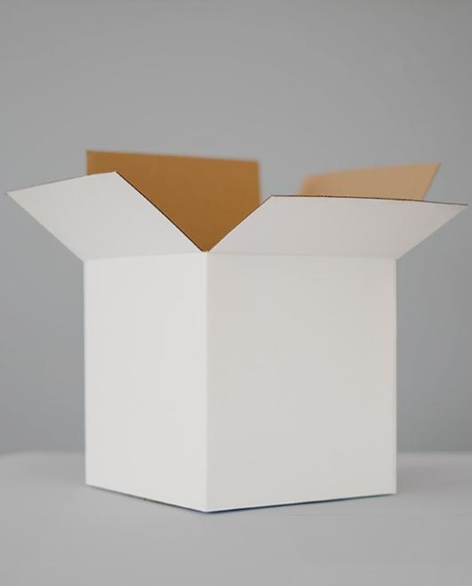Download Free Cardboard Box Mockup | Download