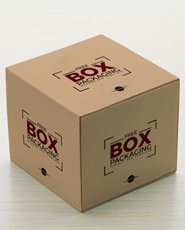 Download Free Box Packaging Mockup PSD Template | Download