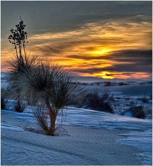White Sands National Monument 11