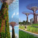 best attractions in Singapore, Bay Gardens 12