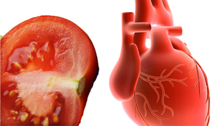 hyppocrates nutrition nourishing properties of tomato