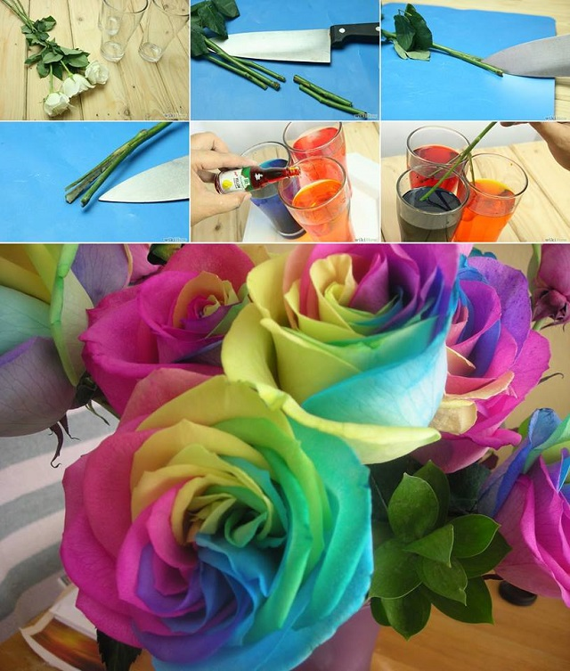 diy rainbow roses moco choco