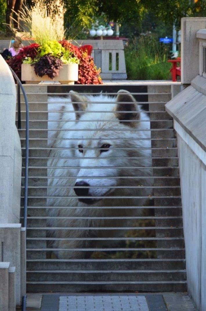 nghệ thuật đường phố cầu thang tuyệt vời trên khắp thế giới, Ottawa - Canada