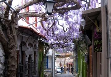 amazing paths around the world Lesvos, Greece