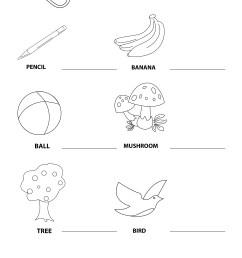 My mother tongue - English Worksheet for Kids   Mocomi [ 3507 x 2481 Pixel ]