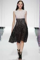 Anya Lee - Christian Dior Resort 2015