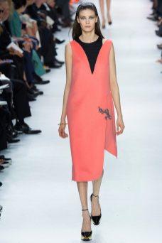 Diana Moldovan - Christian Dior Fall 2014