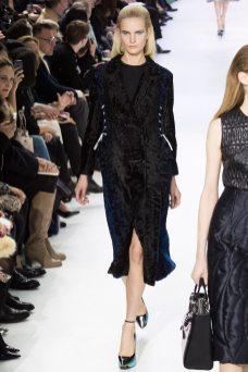 Anmari Botha - Christian Dior Fall 2014