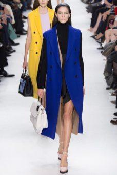 Carla Ciffoni - Christian Dior Fall 2014