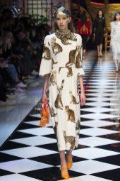 Kerrigan Clark - Dolce & Gabbana Fall 2016 Ready-to-Wear