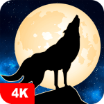 Wolf Wallpapers 4K 4.7.9.63 Apk android-App free download
