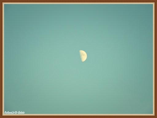 New Image37
