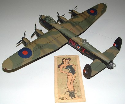 Dads Lanc and Miss X top view