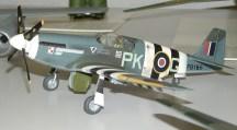 Wayne's P-51 2