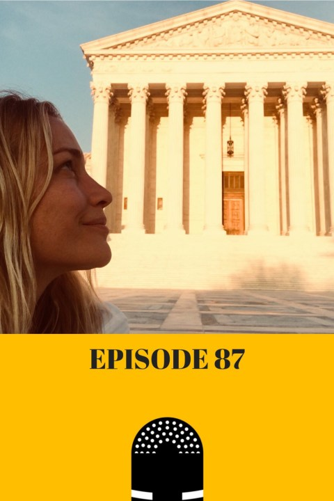 087: Getting Arrested is a Privilege [Guest: Piper Perabo]