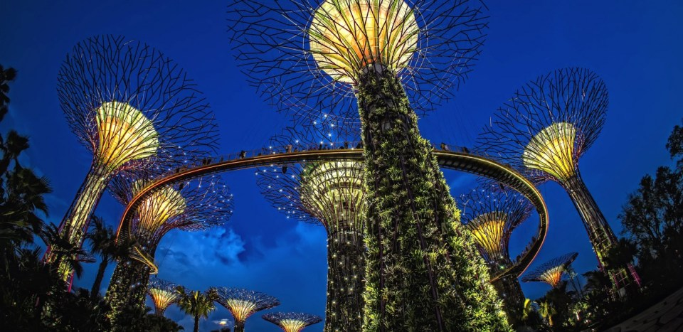 The Supertrees demonstrate wellness architecture in Singapore